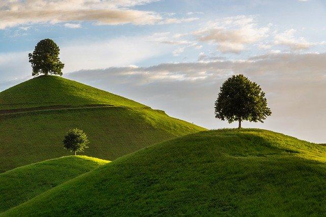 目が疲れたら遠くの緑を見ると良いって本当?嘘?